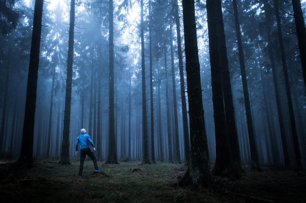 Homme au milieu foret de pins sombre