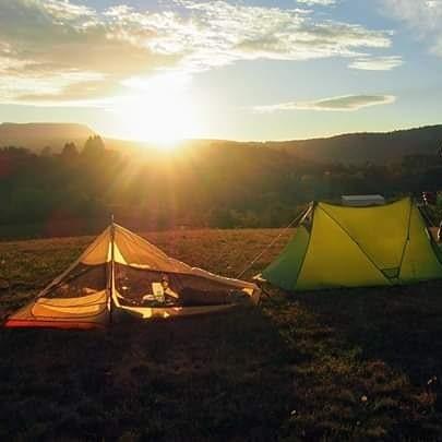 Coucher de soleil derrière sapins tentes dans l'herbe