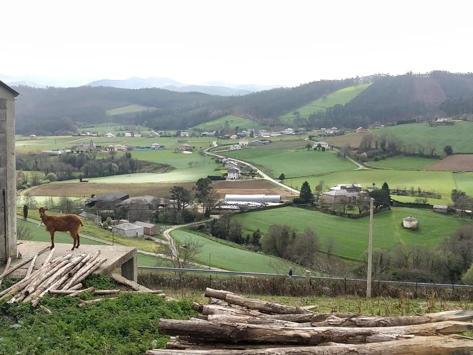 Paysage montagne. Chèvre au premier plan. Villages en contrebas
