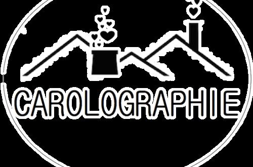 Logo carolographie terril cheminée cœurs qui en sortent